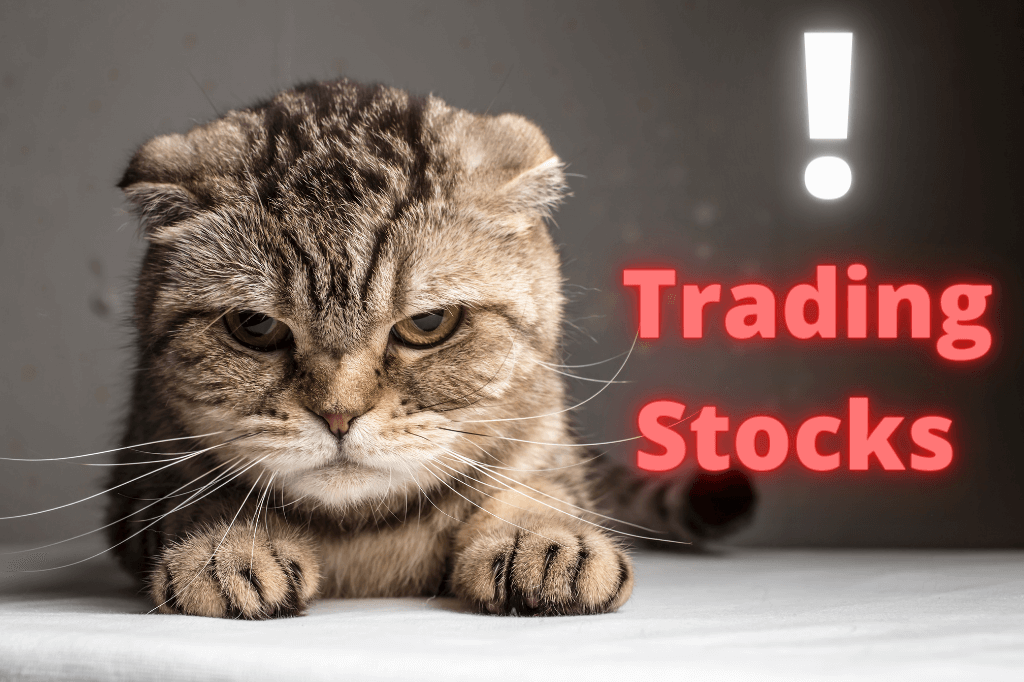 What You Should Know Before Trading Stocks